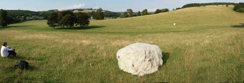Hinchee Hung Boulder at West Dean Gardens