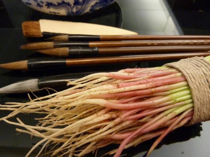 Hinchee-Hung-Spinach-brush